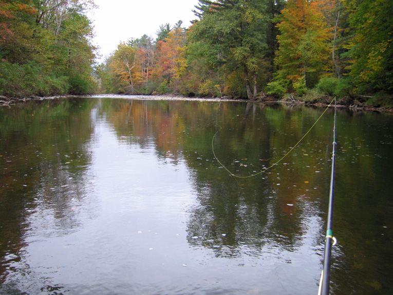 camping at the battenkill river fishing report on trout
