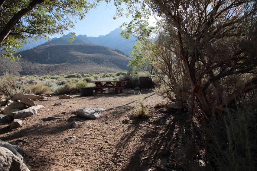 Eastern Sierra camping guide