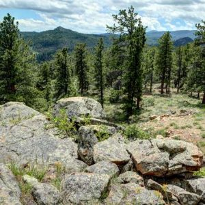 Affordable Colorado Mountain Retreat for sale