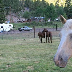 Vickers-Ranch-Workamping-RV-Site-Accomodations